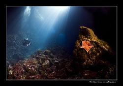 Island Korcula by Dejan Sarman