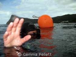 Diver at the surface by Gemma Pellett