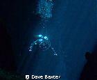 Taken in kilsbys sinkhole in Mt Gambier South Australia by Dave Baxter