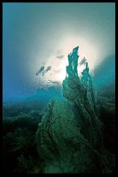 Divers at sunset. by Dray Van Beeck