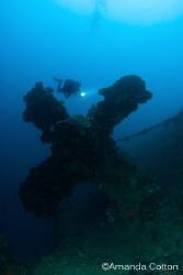 Diver above prop on Rio De Janeiro wreck of Truk Lagoon (... by Amanda Cotton