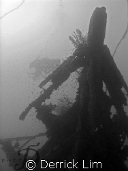Five Sisters Wreck @ Tenggol Island, Malaysia. 1st time t... by Derrick Lim