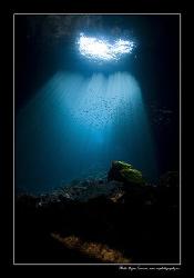 The cave by Dejan Sarman
