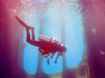 Dive buddy Linda floats freely inside the Wreck of the Sa... by Robyn Churchill