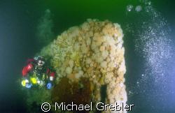 At a depth of 175 feet, a Nova Scotia tech diver passes a... by Michael Grebler