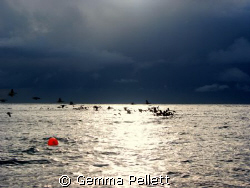 Divers Down, early morning at smits bay, Cape Town by Gemma Pellett