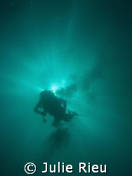 Shadow diver on the way back up, Mafia Island, Tanzania by Julie Rieu
