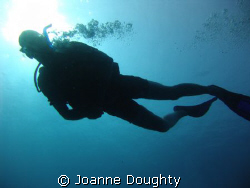 I loved the colour of the blues around the Diver's body w... by Joanne Doughty