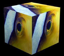 Clown eye cubed by Martin Dalsaso