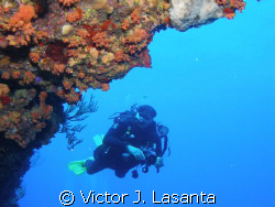 mr. luis colondre having fun in mermaid point dive site a... by Victor J. Lasanta