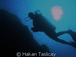 diver by Hakan Taslicay