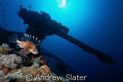 d200, 1/80, F13, ISO 100, 25m on Thistlegorm, took a few ... by Andrew Slater