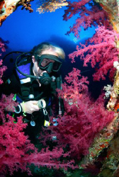 Heather and the wreck of the Aida - Big Brother Island- R... by Jim Garland