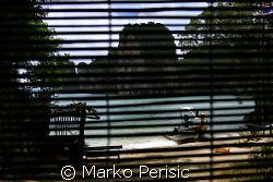 Looking out from Phang Nga Bay ranger hut, onto Ko Tapu o... by Marko Perisic