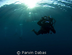 dive buddy taking a picture of me taking a picture of him... by Parvin Dabas