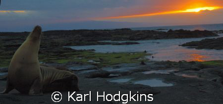Sunset in the Galapagos by Karl Hodgkins