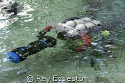 Cave diver returning from dive at Ginnie Springs FL. by Ray Eccleston