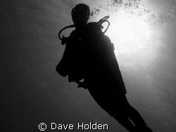 Daylight by Dave Holden