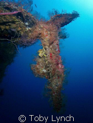 A piece of twisted metal hanging of the hull of the Bianc... by Toby Lynch