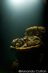 Mask in the interior of one of the many wrecks of Truk La... by Amanda Cotton