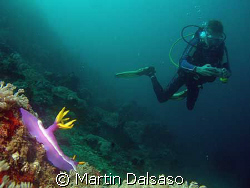 Taken in Sabang, PI- Dive buddy Boris waiting his turn to... by Martin Dalsaso
