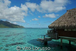 Moorea - French Polynesia by Vito Lorusso