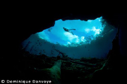 Flying diver by Dominique Danvoye
