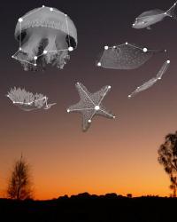 Australia Constellations by Stephen Holinski