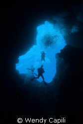 Descent into the Blue Holes, Palau by Wendy Capili