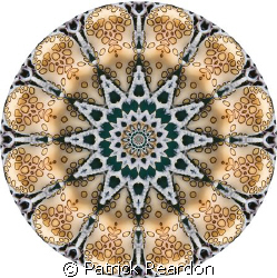 """Kaleidoscopic"" image made from a shot of a flamingo tongue. by Patrick Reardon"