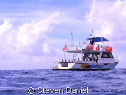 The Blue Angel Divers  No Problem waiting for their Diver... by Steven Daniel