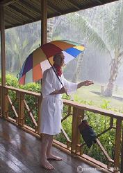 An Englishman Abroad - Mr H at a rainy KBR, one year ago.... by Mark Thomas