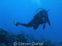 Diver Drifting on the a Cozumel drift dive by Steven Daniel