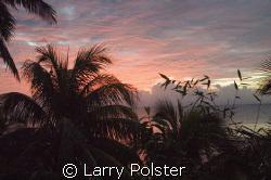 Taveuni, Fiji...sunrise by Larry Polster