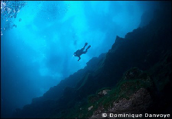 100 foot depth under the ice.  Diver diving under the i... by Dominique Danvoye