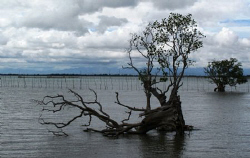 Calm Before The Storm......(Typhoon Auring) by Bernard Maglana
