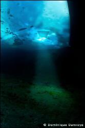 Ice diving - light stream. by Dominique Danvoye