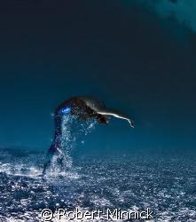 Mermaid Jumping by Robert Minnick