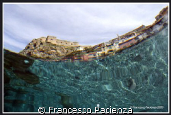 Scilla, view by underwater. Taken with Nikon D60 in Easyd... by Francesco Pacienza