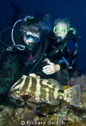 Nassau Grouper and two divers-Turks & Caicos by Richard Goluch