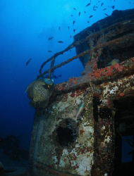 French Angel at the Wreck of the Beata in British Virgin ... by Juan Torres