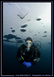 Just came back from a dive week-end under the ice with my... by Michel Lonfat