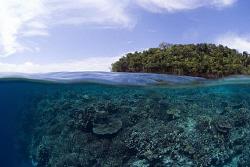 Drop off at Kakaban Island, Indonesia by Erika Antoniazzo
