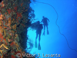 two at the edge of the wall in v.j.levels dive site at pa... by Victor J. Lasanta