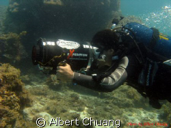 this image taken by canon powershot A720is,with natural l... by Albert Chuang