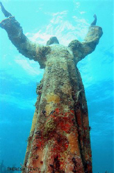 Christ of the Abyss statute on Dry Rocks Reef, Key Largo. by Theresa Tracy