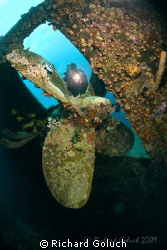 Diver at the prop of Hilma Hooker-Bonaire-Canon 5D 15 mm ... by Richard Goluch