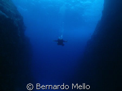 IN this pristine water it looks like a base jump Using G... by Bernardo Mello