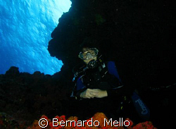 This warm and pristine waters of Fernando dse Noronha and... by Bernardo Mello