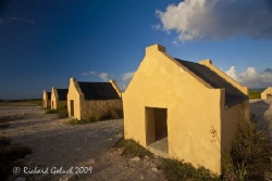 Red Slave Huts-Bonaire by Richard Goluch